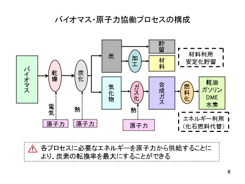 Nuclearbiomassprocessj